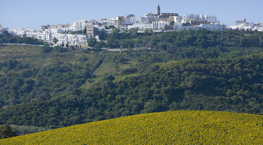 Distant Views, Vejer