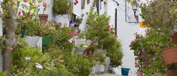 Typical Street, Vejer